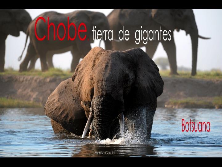 Presentación del PN de Chobe en Llibreria Horitzons