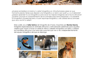 Photographic Workshop: African Wildlife on Safari