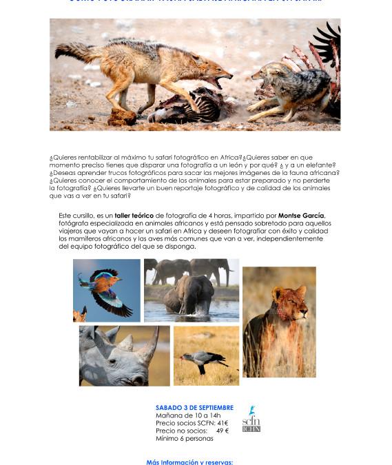 Photographic Workshop: African Wildlife on Safari