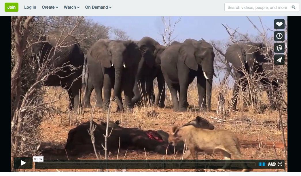 Crossing Botswana