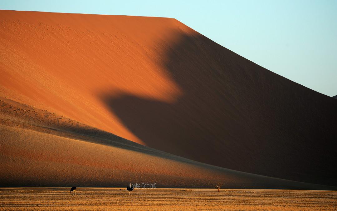 """Próxima ponencia: """"Recorriendo Namibia"""""""