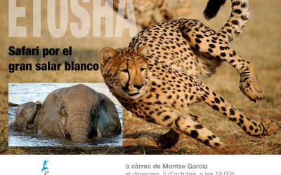 Etosha, Safari por el gran lugar blanco