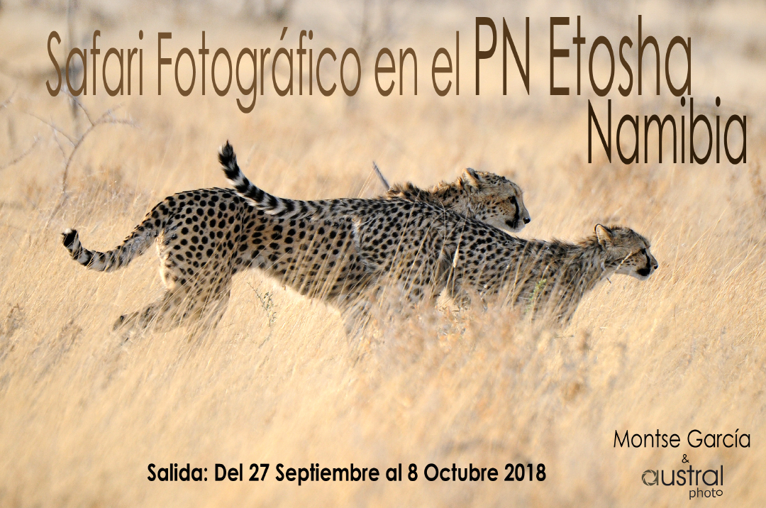Presentación parque Etosha 2018