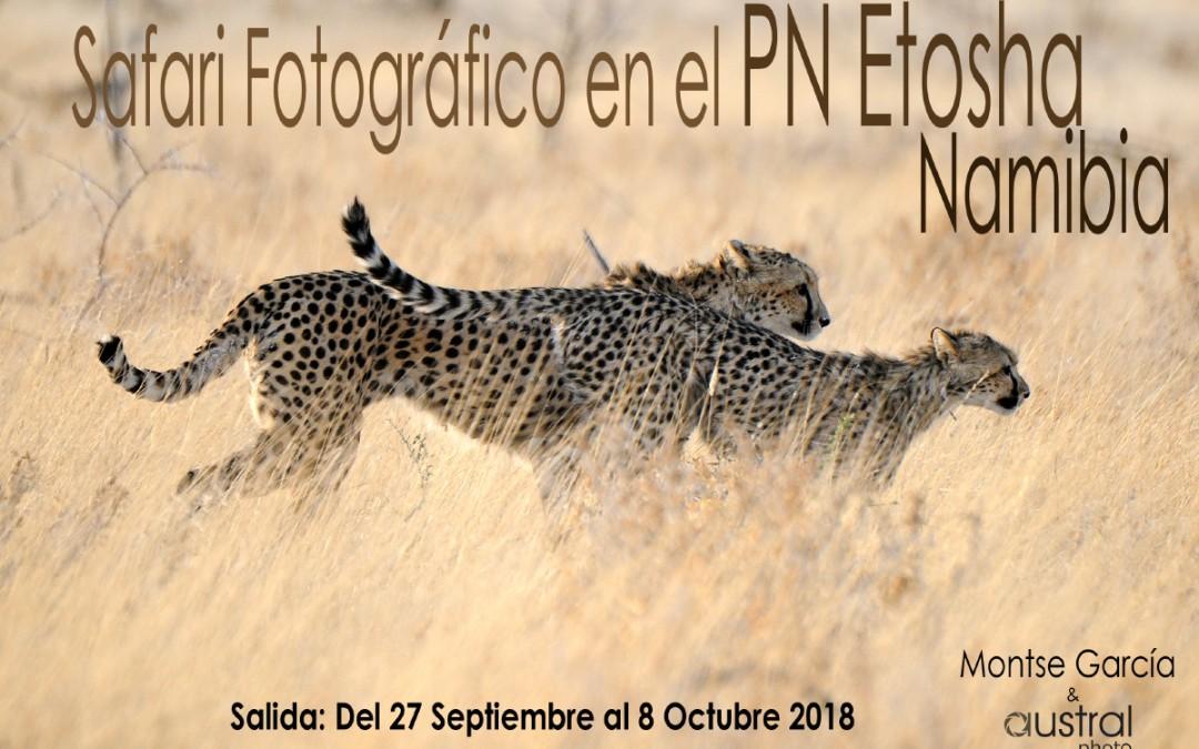 Safari fotográfico en el parque de Etosha