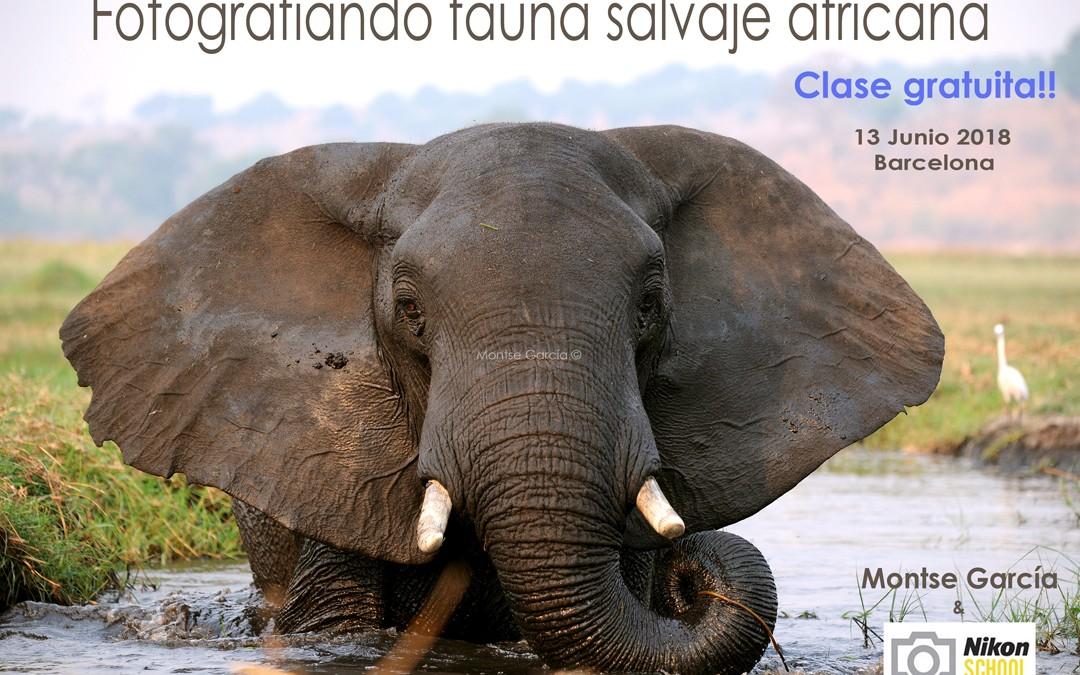 Curso gratuito, fotografiando fauna salvaje africana Nikon School