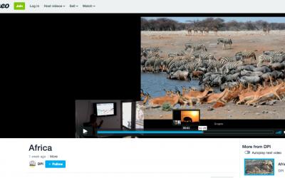 Clase colgada: Fotografiando fauna salvaje africana. Nikon School