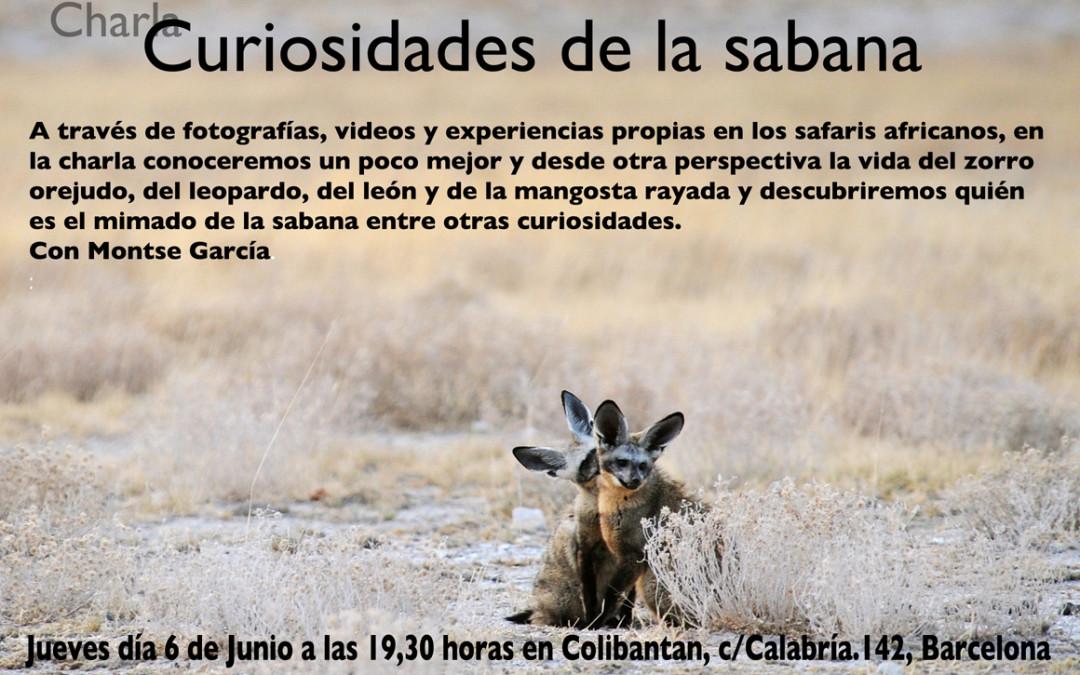 """Charla sobre comportamiento animal: """"Curiosidades de la sabana"""" Barcelona"""